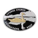 CYGNUS CYGNUS (Whooper Swan) – 100 Tenge – Kazakhstan – silver coin