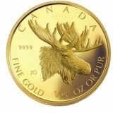 Majestic Moose – Canada – 2004 – gold coin