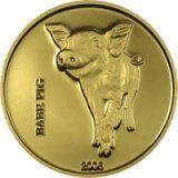 Baby Pig – Congo – 2006 – gold coin