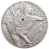 Red Squirrel – Palau – 2013 – 5 Dollars – silver coin with Swarovski