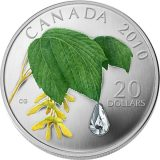 Maple Leaf with Raindrop – 2010 – Canada – 20 Dollars – silver coin with Swarovski Crystals