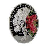 Haloxylon – 500 Tenge – Kazakhstan – silver coin