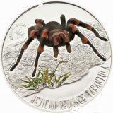 Mexican Redknee Tarantula – Niue – 2012 – 1 Dollar – silver coin