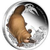 Australian Bush Babies: Australian Platypus – 2013 – Australia – 50 Cents – coloured silver coin