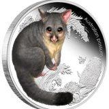 Australian Bush Babies: Australian Possum – 2013 – Australia – 50 Cents – coloured silver coin